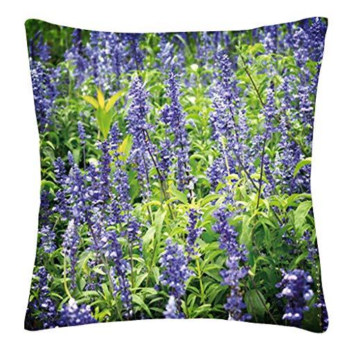 Viewk Taie d'oreiller DéCoratives Throw Pillow Plant Hug Pillowcase Case Star Shining Printedsofa Cushion Cover Home Decor 45cm X 45cm