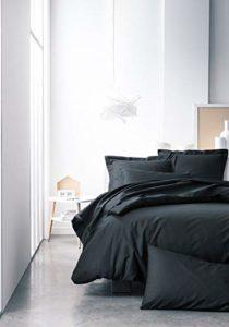 TODAY 106217 Drap Housse Jersey Coton Réglisse 160 x 200 cm