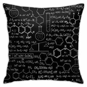 Taie d'oreiller Science Chemistry Laptop Pad Taie d'oreiller Standard Housse de Coussin Lavable en Machine, 18x18in