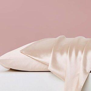 YAOUFBZ Lot de 2 taies d'oreiller en Satin,100% Microfibre Housse d'oreiller Doux Prend Soin de Votre Peau et Antichute de Cheveux,Anti-acariens et Hypoallergénique,48 * 74 cm