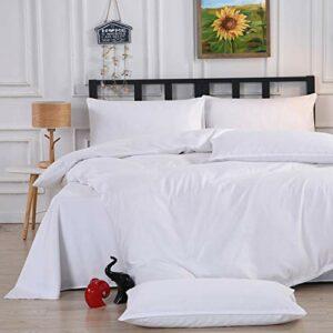 ZWNLL Lot de 2 taies d'oreiller de taille standard de qualité hôtelière – Housse de couette douce et anti-poussière – Lavable – Idéal pour le devant, le dos et les côtés – 48 x 74 cm – 1 paire
