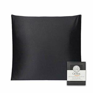 OLESILK Taie d'oreiller en Soie Naturelle de mûrier 16 Mommes: Prend Soin de Votre Peau et Moins de Perte de Cheveux – Noire, 65x65cm