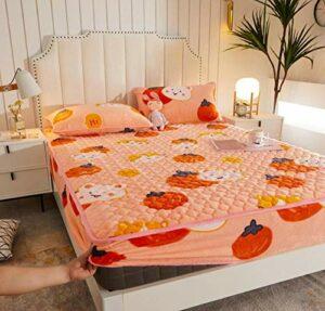 XLMHZP Couvre-lit de Luxe Drap de lit Protecteur Couvre-lit Gris Rouge Corail Polaire épais Coussin Doux pour Chambre à Coucher Matelas Couvre-lit-F_150x200+30cm