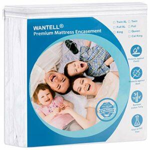 Housse de matelas imperméable à fermeture éclair, hypoallergénique, respirant, silencieux, sans vinyle et anti-punaises de lit (Queen)