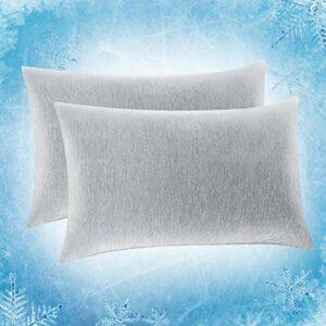 SOLEDI Lot de 2 Taie d'oreiller Rafraîchissante,Fibre de Refroidissement Japonaise Q-Max 0.4 Taie d'oreiller d'été,Rafraîchissant et Respirant, Empêchant la Transpiration (Gris,50*75cm)