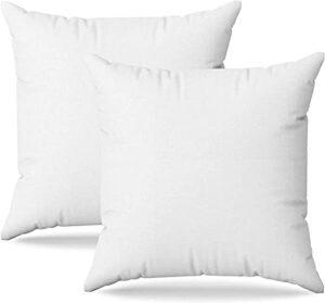 Coussins Canape 45×45 Lot de 2 Oreillers Decoratif Accessoires pour Sofa et Lit Decoration Aesthetic pour Salon et Exterieur Antiallergiques et Anti-Acariens avec Taie d'oreiller en Coton et Polyest.